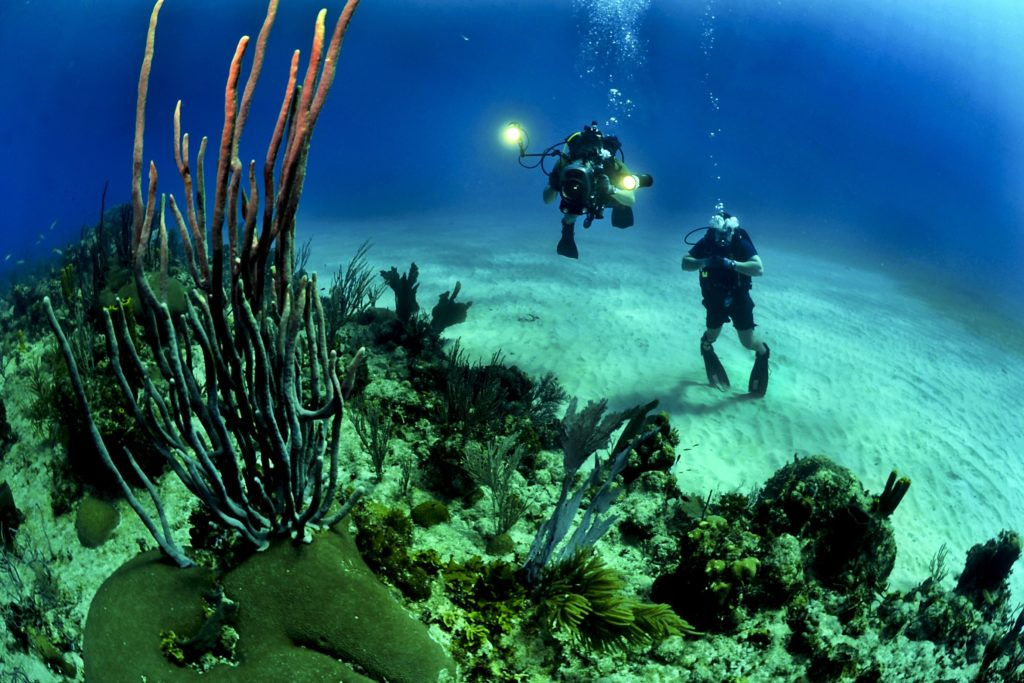best activities in phuket, scuba diving