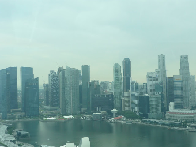 holidays in singapore, view from the flyer